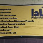 CoLab Procedures
